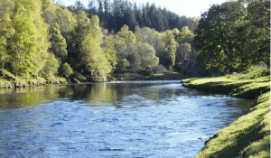 Procedimientos sancionadores en materia de aguas: cálculo del daño al Dominio Público Hidráulico