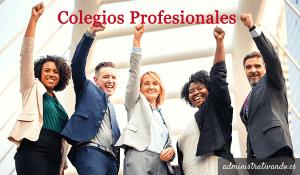 ¿Puede un colegio profesional posicionarse sobre cuestiones políticas no atinentes a la gestión de la profesión?