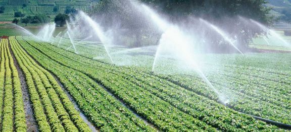 ¿En qué consiste el canon de regulación y la tarifa de utilización del agua?